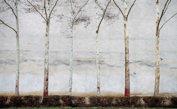 Фото: cut-online.com