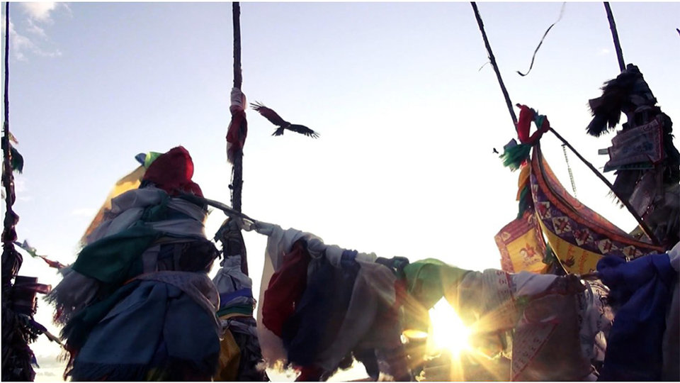 «Курс молодого шамана»