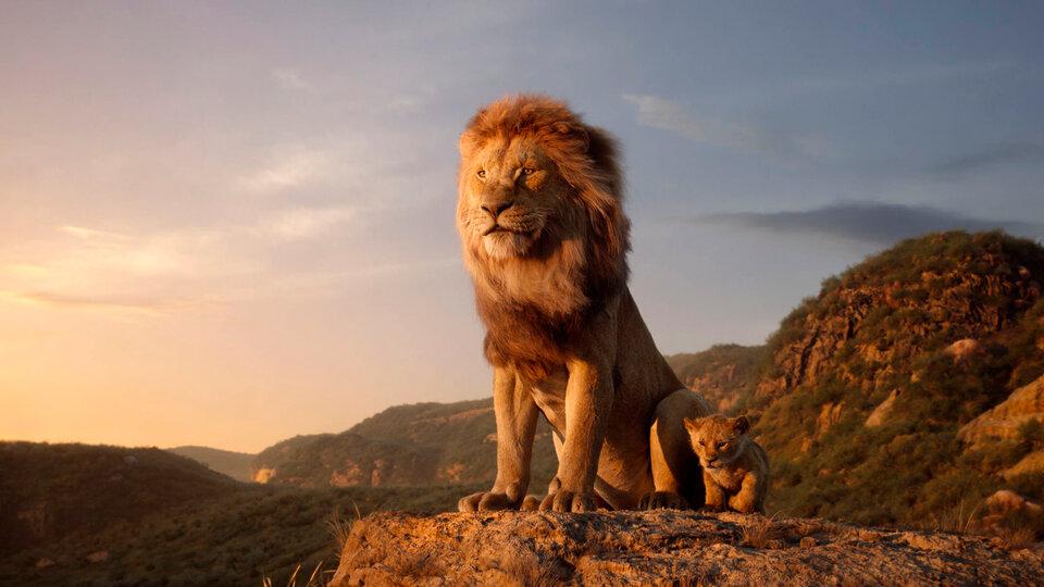 Картинки по запросу Львы новом году триумф в талантах