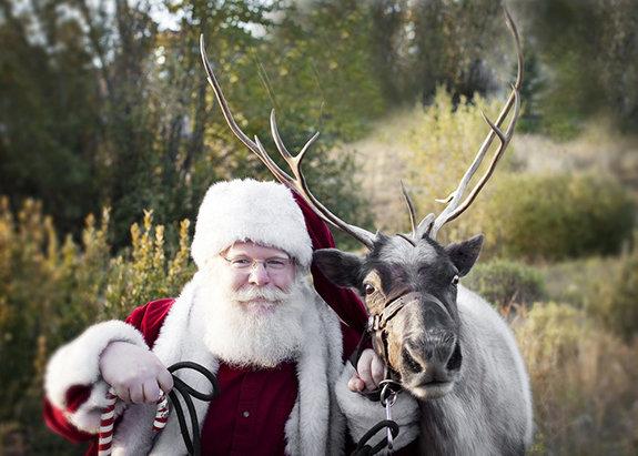 Без выдумок: Документальные фильмы для зимних праздников