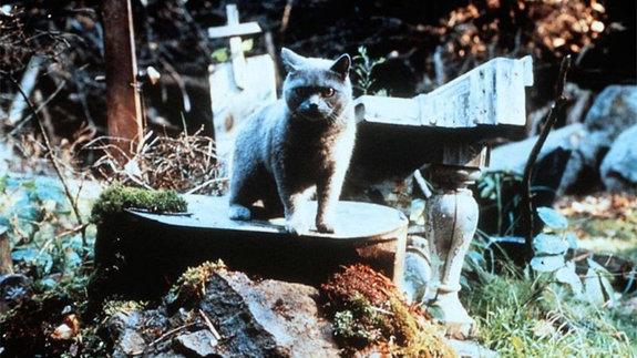 «Кладбище домашних животных»