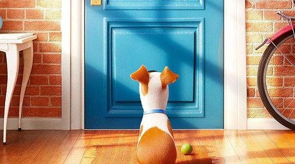 «Тайная жизнь домашних животных»
