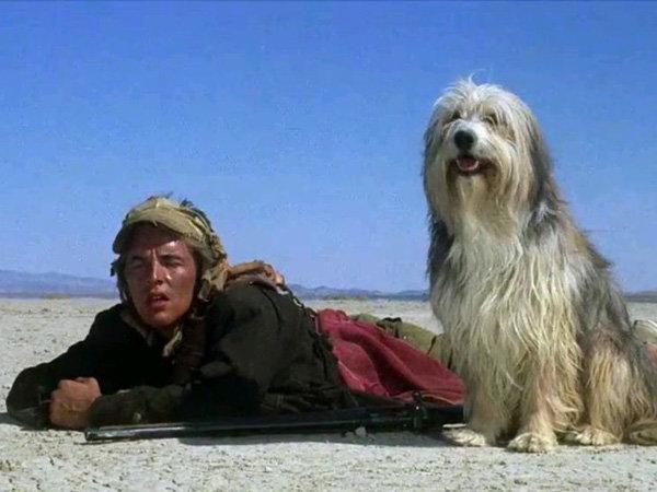Кадр из фильма «Парень и его собака»