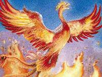 «Гарри Поттер и орден Феникса»: Кастинг