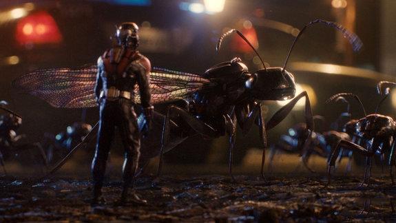 «Человек-муравей»