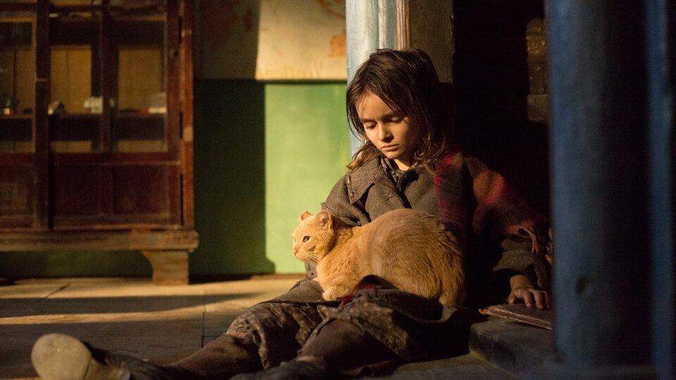 Война Анны, киноафиша Симферополя на май 2019
