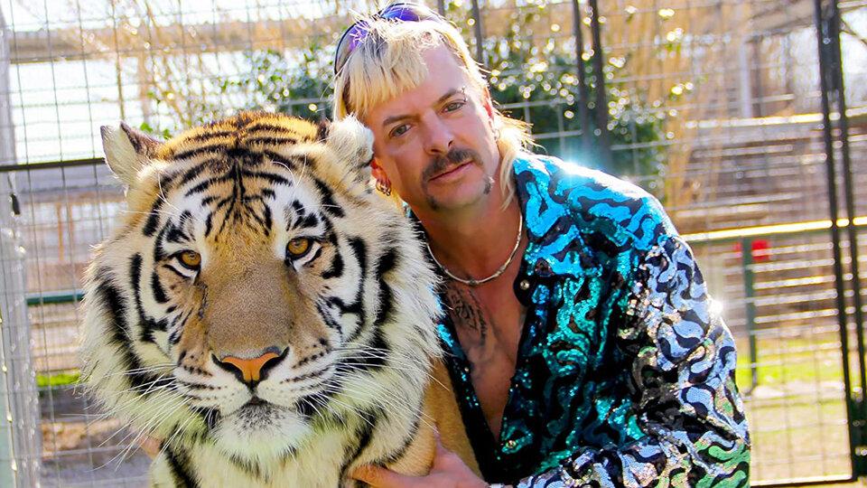 «Король тигров»