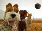 Видеосалон: Музыка против деменции и собаки Уэса Андерсона в VR