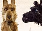 «Остров собак» Уэса Андерсона: Японский пес тебе товарищ