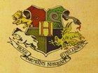 Появится ли Гарри Поттер в спин-оффе по учебнику из Хогвартса?