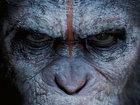 Сиквел «Планеты обезьян» стал лучшим в визуальных эффектах