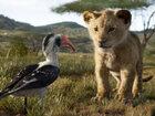 Что смотреть в кино: «Король Лев», «Солнцестояние», «Соблазн»