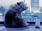 Берлин-2016: Мэрил Стрип, братья Коэн и восьмичасовой фильм