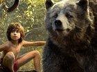 Disney планирует «Книгу джунглей 2»