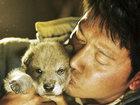37-й ММКФ: Жан-Жак Анно перешел от медведей к волкам