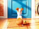 «Тайная жизнь домашних животных 2» отложена на год