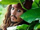 Травма Джонни Деппа откладывает работу над пятыми «Пиратами»