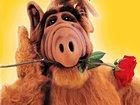 Warner Bros. TV планирует выпустить ремейк сериала «Альф»