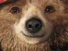Медвежонок Паддингтон обрел новый голос