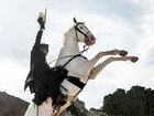 Эволюция кинообраза: Белая лошадь на экране