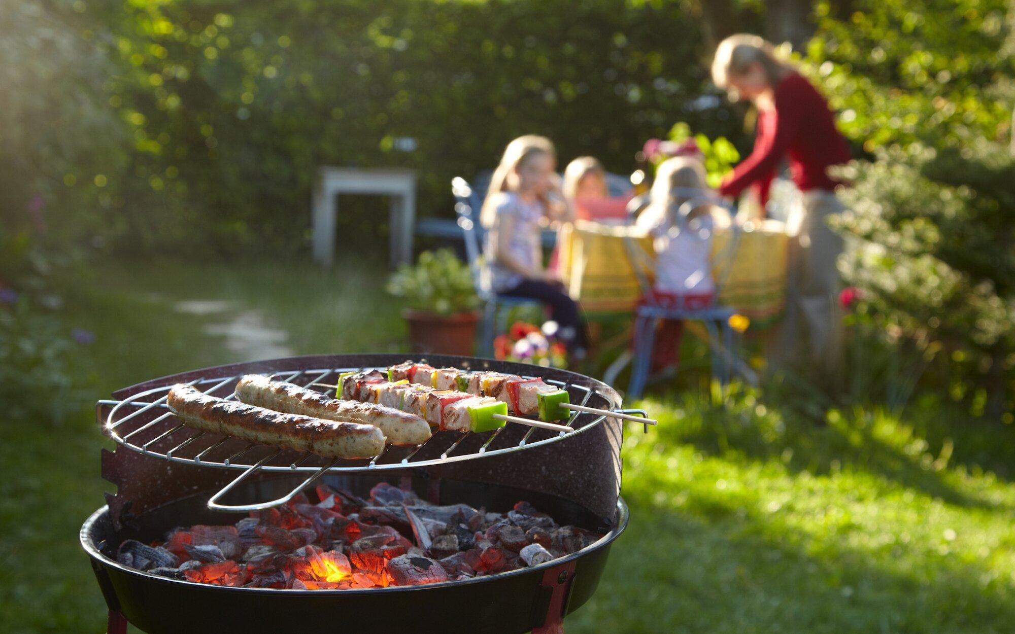 обеспечения хорошего пикник в огороде дома фото методики