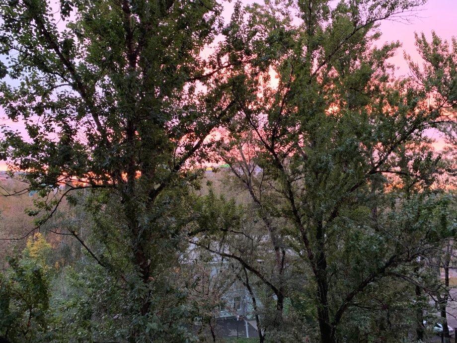 Камера iPhone XS хорошо сняла красивый розовый восход у меня за окном