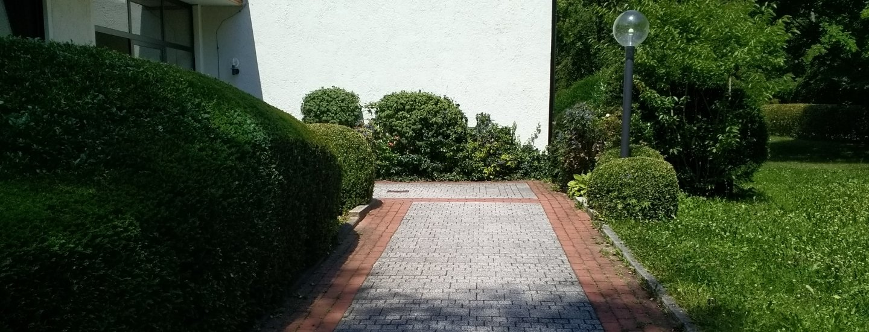 Укладка тротуарной плитки на песок: технология и специфика | 550x1440