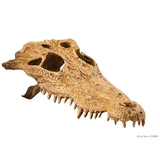 Декорация для террариума Hagen Exo-Terra Crocodile Skull