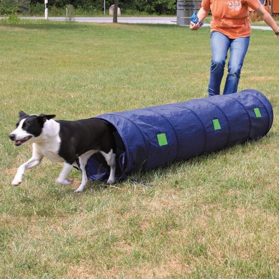 Тоннель для собак