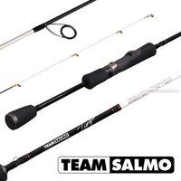 Спиннинг. Team Salmo TIOGA 2.13м / тест 0.5-5.5г