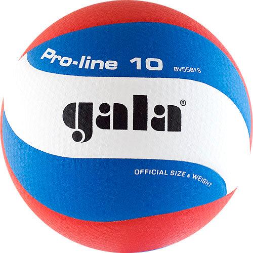Мяч волейбольный Gala Pro-Line 10, размер 5, арт.BV5581S