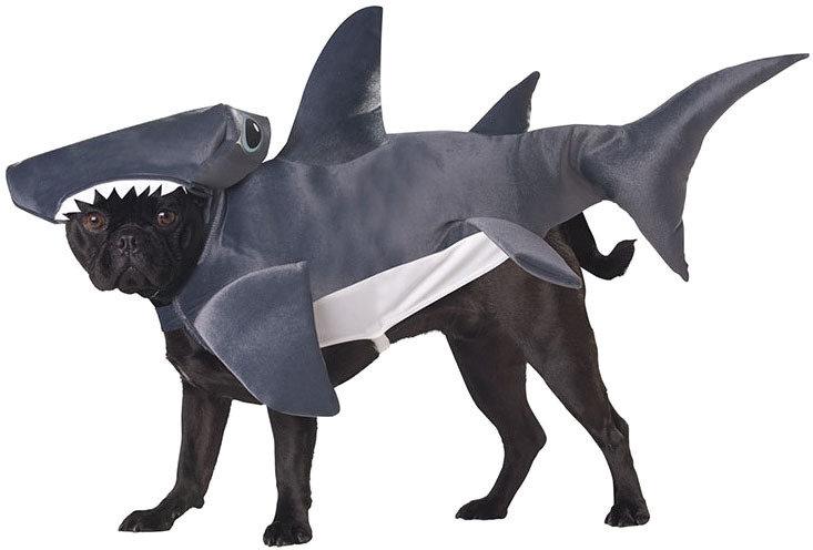 Костюм для собак California Costumes Костюм для собаки Акула, S