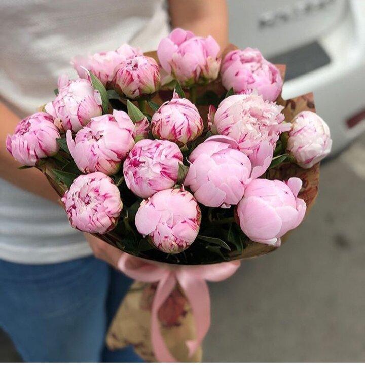 Цветы подарить, купить пионы цветы в великом новгороде