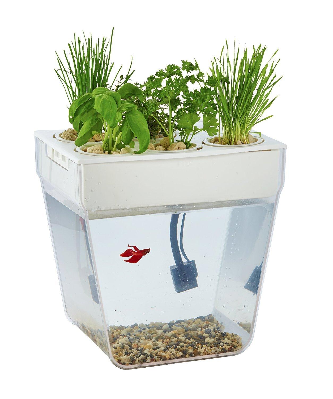 DIY House Акваферма, Набор для выращивания растений и ухода за рыбкой
