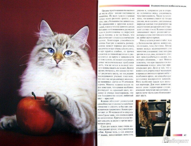 """Федорова О. """"Сибирская кошка. Содержание и уход"""""""