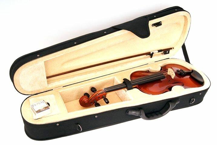 STRUNAL B15-4/4 Скрипка в футляре со смычком. Скрипка модели 15w, смычок 7/25, бразильское дерево, жесткий черный контурный футл