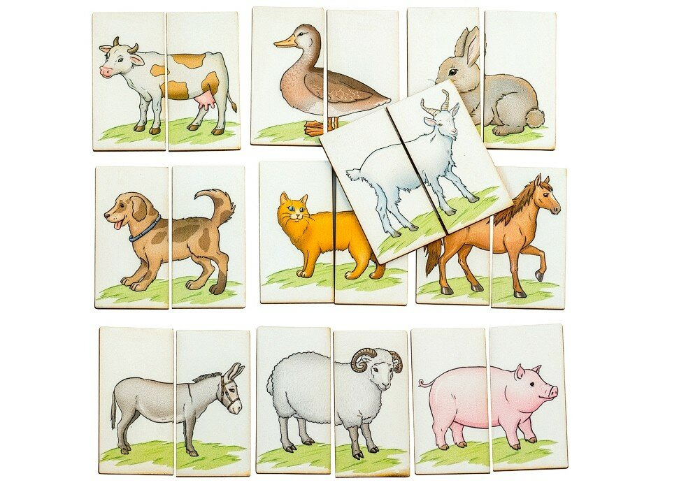 любит картинка головоломка животные вас ждет пенный