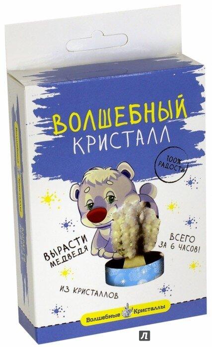 Набор для исследований Бумбарам Мишка