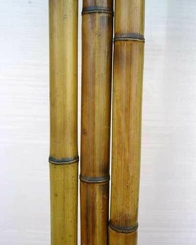 Бамбук обожженный лакированный d 30-40мм L=2,8-3м
