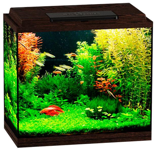 Аквариум Биодизайн Классик 50 венге (1 шт)