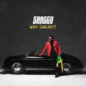 """Shaggy """"Wah Gwaan?!"""""""