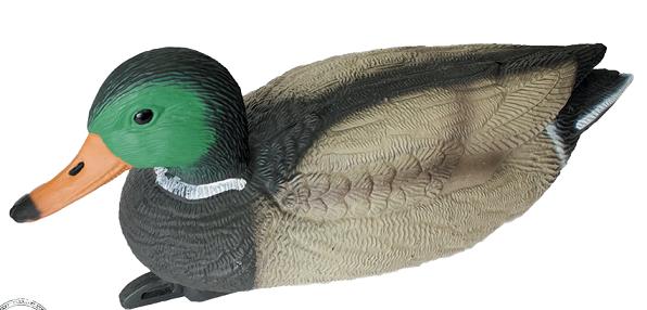 Чучело кряква плавающая (селезень)
