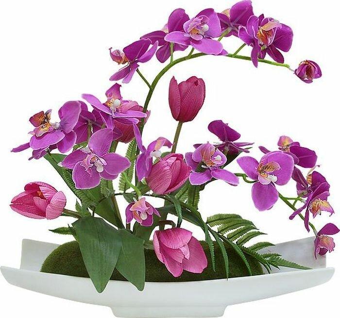 Цветы декоративные Dream Garden