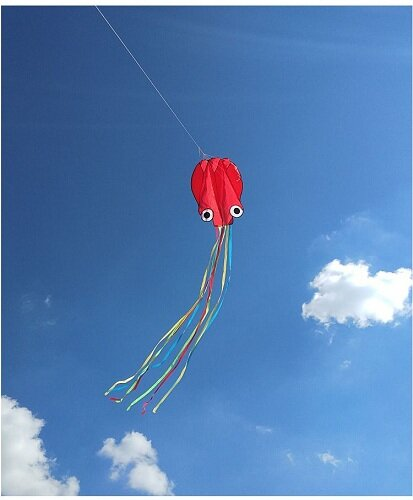 Воздушный змей BRADEX Осьминог