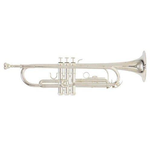 Труба ROY BENSON TR-202S Bb