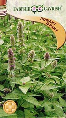 """Семена. Лофант """"Франт"""" (10 пакетов по 0,3 г) (количество товаров в комплекте: 10)"""