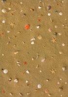 Пробковое покрытие, пробковый пол с фотопечатью клеевой CORKSTYLE PRINTCORK Fantasy&Stone, Sandstrand
