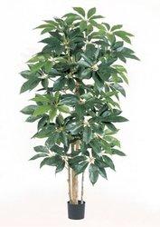 TREEZ COLLECTION Офисные аксессуары Искусственные деревья Шеффлера гигант 10.38006N 190 см.
