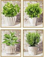 Schipper кулинарные травы в горшках набор из 4 раскрасок