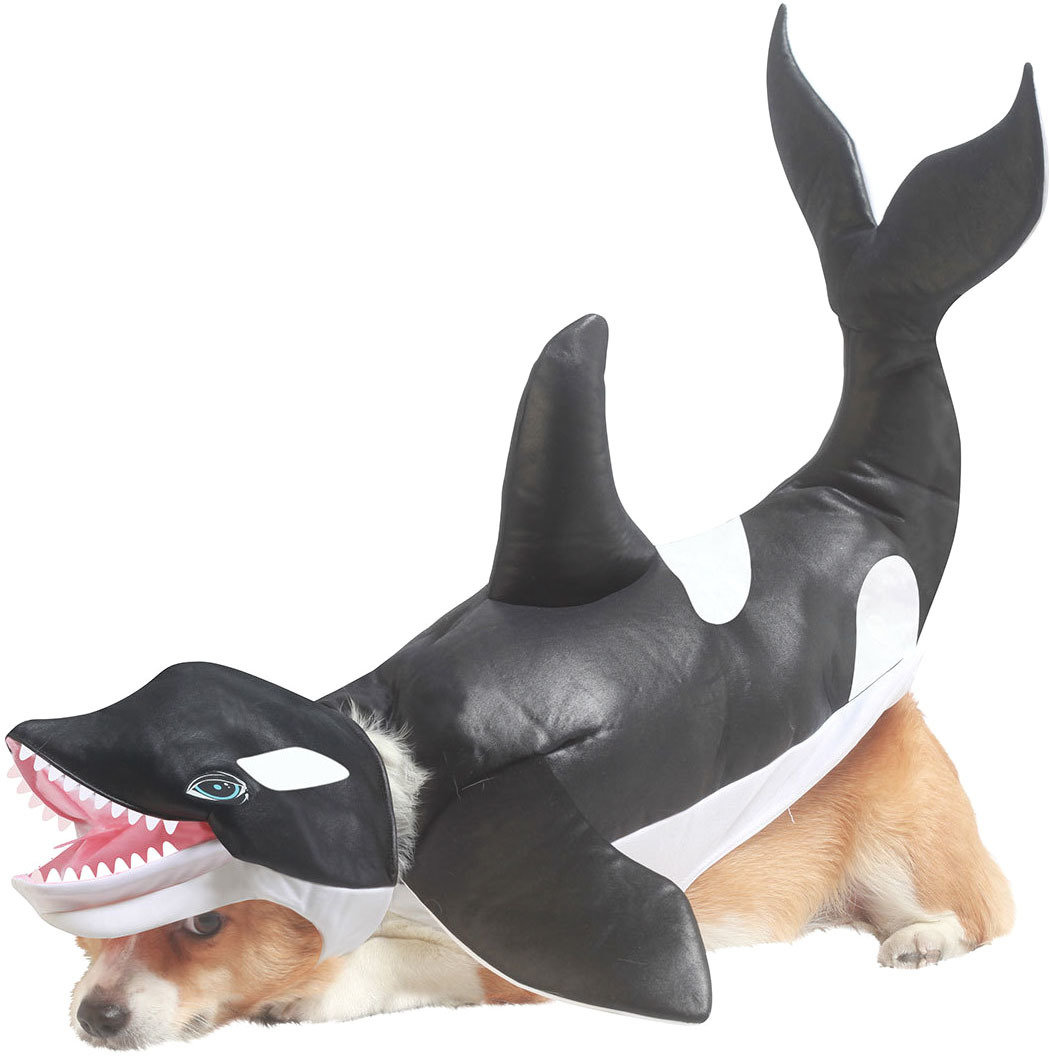 Костюм для собак California Costumes Костюм для собаки Касатка, S